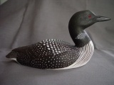 Loon Profile