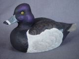 "Ring Neck Drake -Donated to ""Save Sandy Hook"""